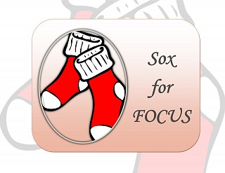 SOX for FOCUS